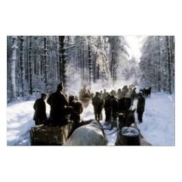 Zimowe polowanie dla dewizowców, za dolary w Bieszczadach