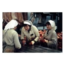 Państwowe Zakłady Mięsne. Robotnice przy pracy. Rawa Mazowiecka, 6 kwietnia