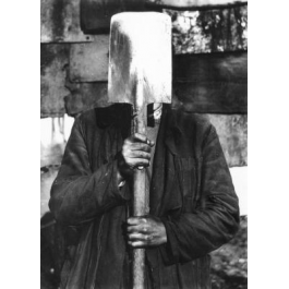 Nieznany z cyklu Głowy wawelskie