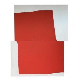 Studio of red