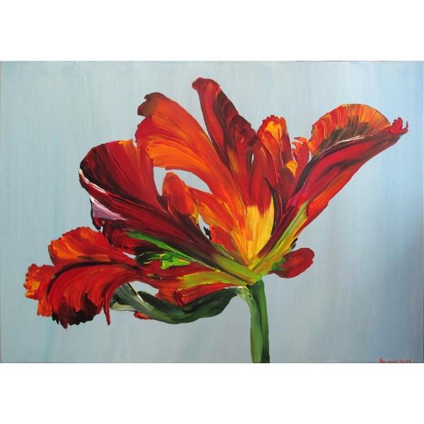 Frayed tulip