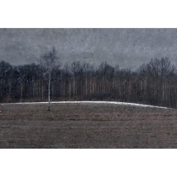 Zima 144B z cyklu Cztery Pory Roku