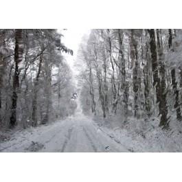 Zima 122 z cyklu Cztery Pory Roku