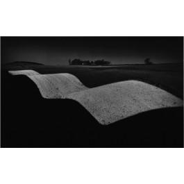 Wavy landscape, 2015