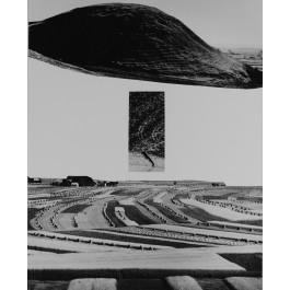 Reconstruction of the landscape, 1958