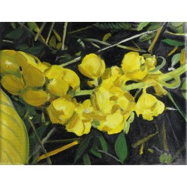 Kwiaty Indii 6